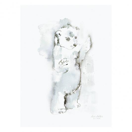 polarprins-elise-stalder