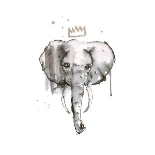 elephant-elise