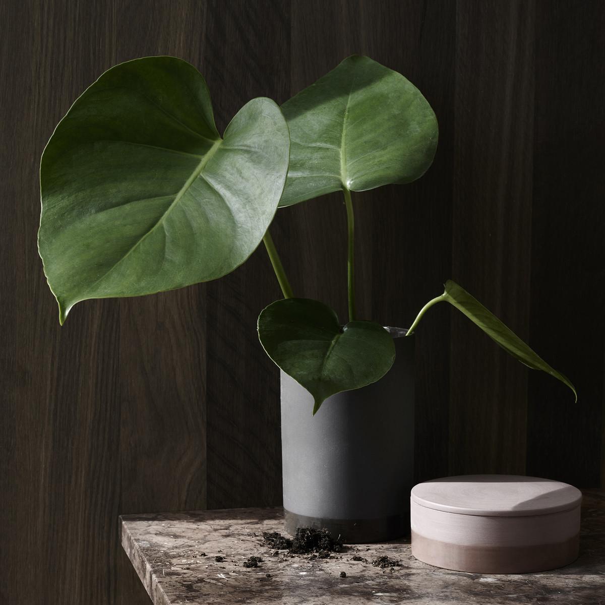 leo bella menu cylindrical vase ash large. Black Bedroom Furniture Sets. Home Design Ideas