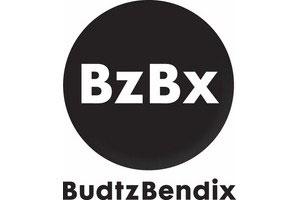logo-budtzbendix